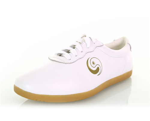 How to choose your Tai Chi shoes